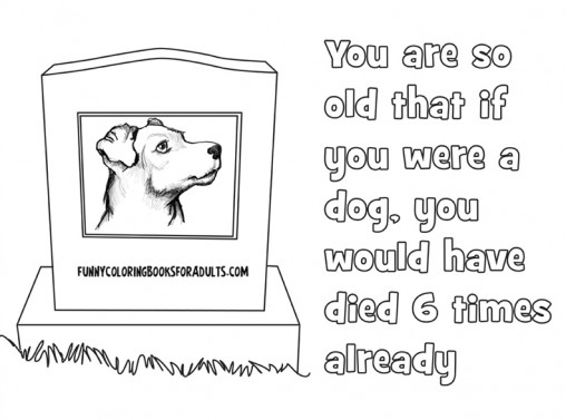 You Are So Old That if You Were a Dog You Would Have Died 6 Times Already