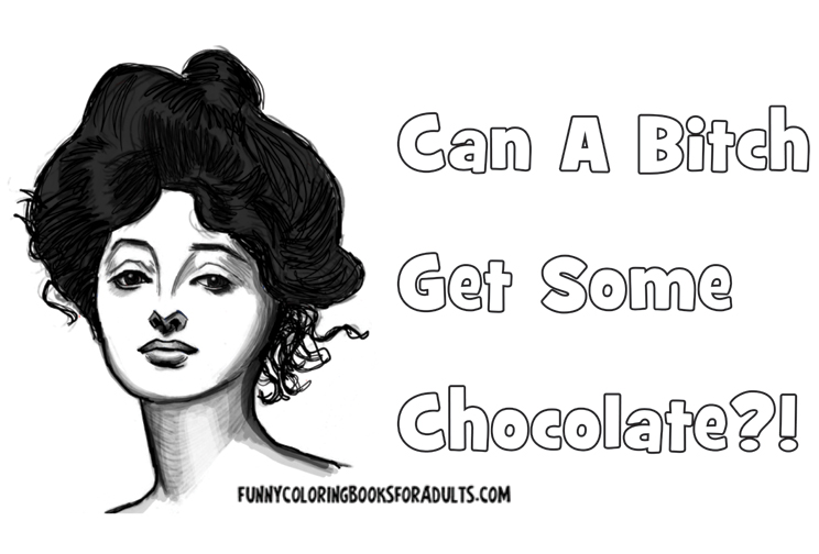 Snarky Funny Can a Bitch Get Some Chocolate