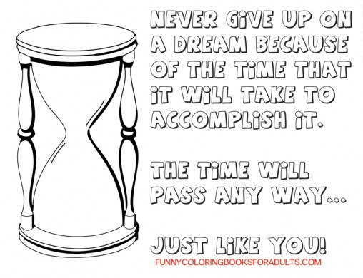 Snarky Quote : Never Give Up On Your Dreams The Time Will Pass Just Like You
